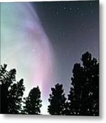 View Of Trees And Northern Lights Metal Print