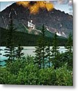 Waterfowl Lake Metal Print