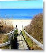 Way To The Bay Metal Print
