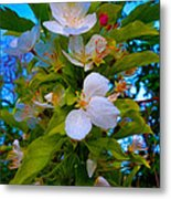 White Beauty Metal Print