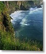 Wildflowers At The Coast, County Metal Print