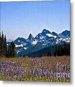 Wildflowers In The Cascades Metal Print