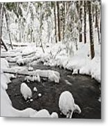 Winter Snow Along Still Creek In Mt Metal Print