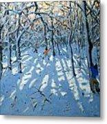 Winter Woodland Near Newhaven Derbyshire Metal Print