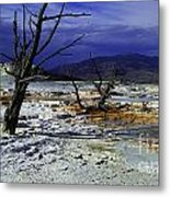 Yellowstone National Park 6 Metal Print