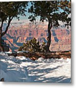 10398 Twisted Junipers Metal Print