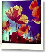 Field Of Poppies Metal Print