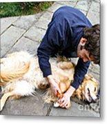 Dog Grooming Metal Print