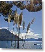 Lake Maggiore Metal Print by Joana Kruse