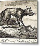 1778 Falkland Islands Wolf Fox Extinct Metal Print