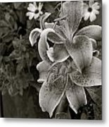 Leveille Collection Metal Print