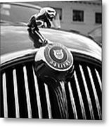 1963 Jaguar Front Grill In Balck And White Metal Print