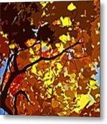 Beautiful Fall ... Metal Print