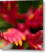 Botanical Gardens Metal Print
