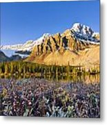 Bow Lake And Crowfoot Mountain Metal Print