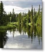 Calm Lake Reflection Metal Print by Conny Sjostrom
