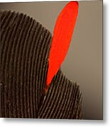 Cedar Waxwing Feather Metal Print