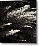 Common Polypody Metal Print