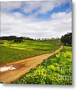 Countryside Landscape Metal Print by Carlos Caetano