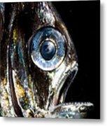 Deep Sea Hatchetfish Metal Print