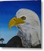Eagle At Dusk Metal Print