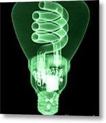 Energy Efficient Light Bulb Metal Print