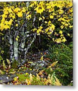 Fall Color Highland Scenic Highway Metal Print