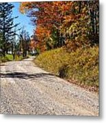 Fall Color Randolph County West Virginia Metal Print