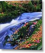 Glenmacnass Waterfall, Co Wicklow Metal Print by The Irish Image Collection