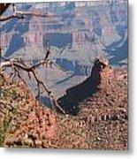 Grand Canyon National Park Usa Arizona Metal Print
