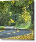 Historic Columbia River Highway Metal Print by Alan Majchrowicz