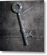 key Metal Print