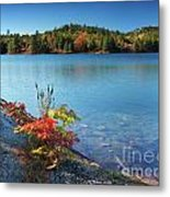 Killarney Provincial Park In Fall Metal Print