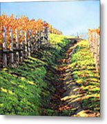 Late Autumn In Napa Valley Metal Print