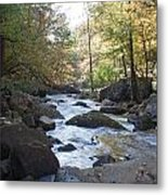 Laurel Creek Metal Print