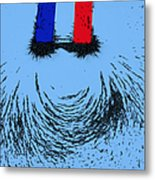 Magnetic Attraction Metal Print