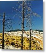 Mammoth Upper Terrace Metal Print