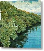 Mangroves 2 Metal Print