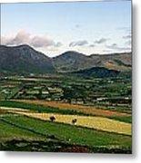 Mourne Mountains, Co. Down, Ireland Metal Print