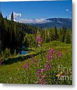 Ohio Creek Valley Colorado Metal Print