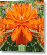 Orange Fantasy Metal Print