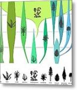 Plant Evolution, Diagram Metal Print