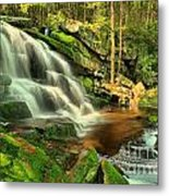 Pool In The Forest Metal Print