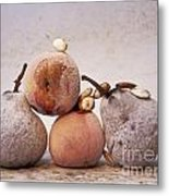 Rotten Pears And Apple. Metal Print by Bernard Jaubert