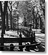 Scenes From Central Park Metal Print