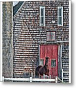 Stoudwater Delight Metal Print