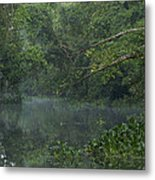 View Of The Menangul River And Rain Metal Print