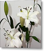 White Lily Spray Metal Print