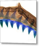 X-ray Of Shark Jaws Metal Print