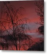 2011 Sunset 1 Metal Print
